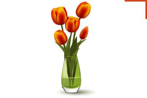 тюльпаны вектор
